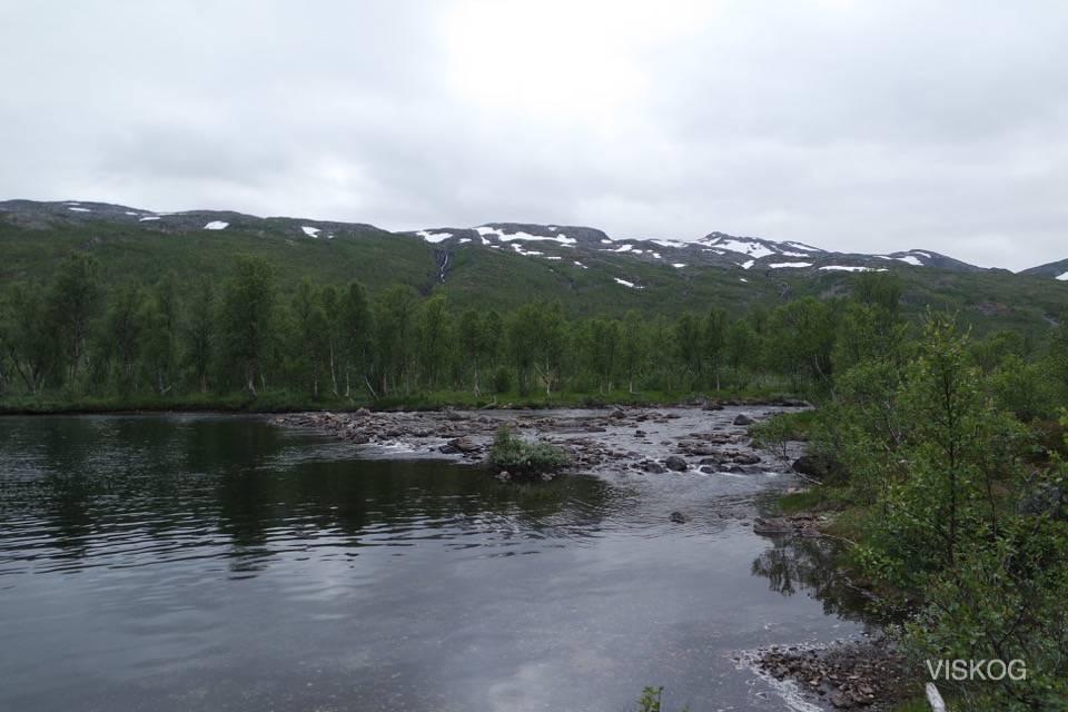 Rett sør for Åndervatnet