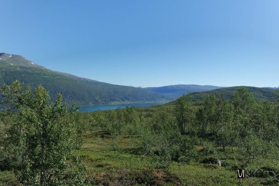 Litt av Lavangsfjorden